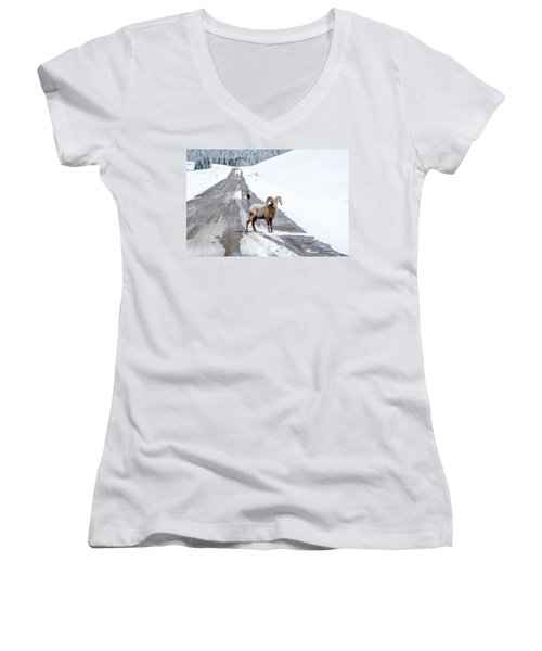 On The Road Again Big Horn Sheep  Women's V-Neck