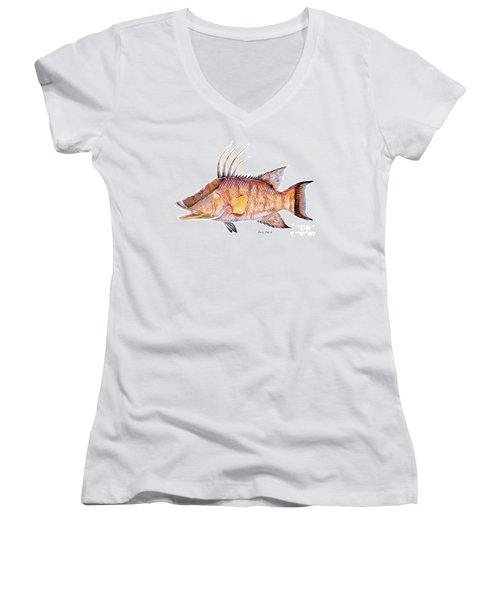 Hog Fish Women's V-Neck T-Shirt (Junior Cut) by Carey Chen