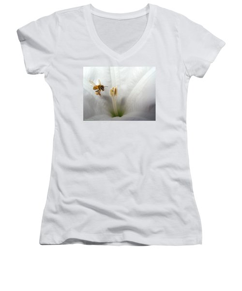Honey Bee Up Close And Personal Women's V-Neck T-Shirt (Junior Cut) by Joyce Dickens