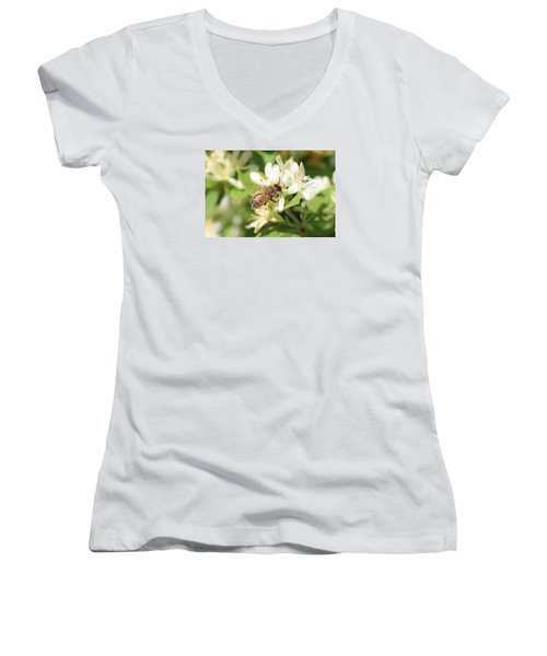 Honeybee And Honeysuckle Women's V-Neck T-Shirt (Junior Cut) by Lucinda VanVleck