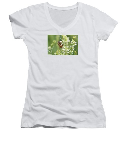 Honeybee On Sweet Clover Women's V-Neck T-Shirt (Junior Cut) by Lucinda VanVleck