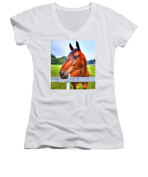 Horse Closeup Women's V-Neck T-Shirt (Junior Cut) by Jonny D