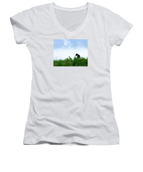 Women's V-Neck T-Shirt (Junior Cut) featuring the photograph Horse On The Hill by Joan Davis
