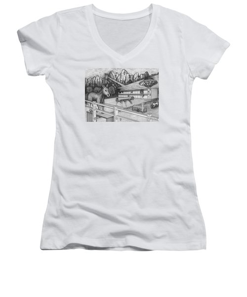 Horse Perspective Women's V-Neck T-Shirt