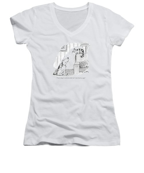 I Was A Dog In A Previous Life Women's V-Neck
