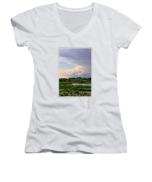 Intracoastal Colours Women's V-Neck T-Shirt (Junior Cut) by Alice Gipson