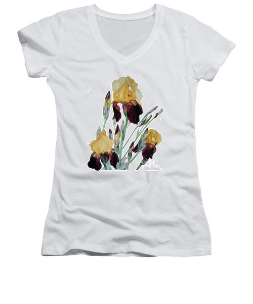 Watercolor Of Tall Bearded Iris In Yellow And Maroon I Call Iris Beethoven Women's V-Neck T-Shirt