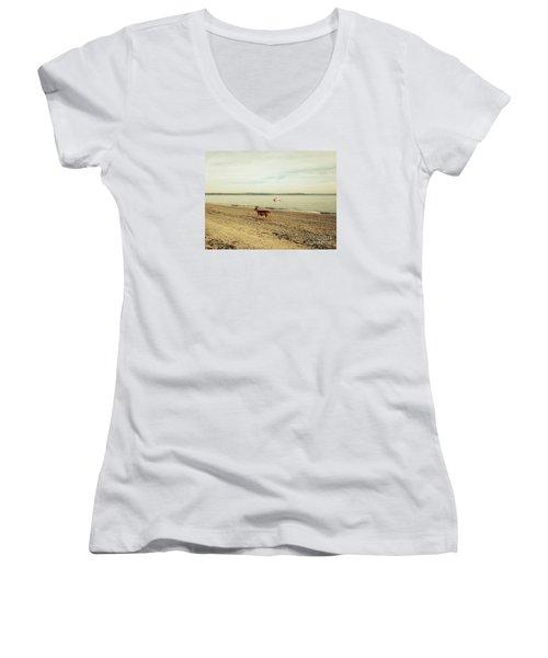 Island Deer Women's V-Neck T-Shirt
