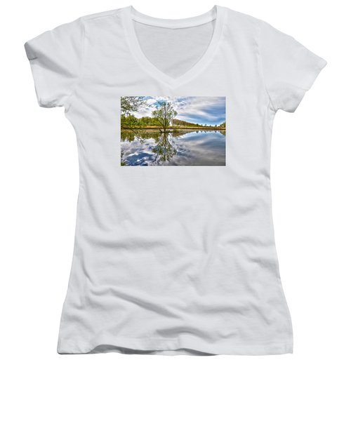 Island Tree Women's V-Neck T-Shirt (Junior Cut) by Frans Blok