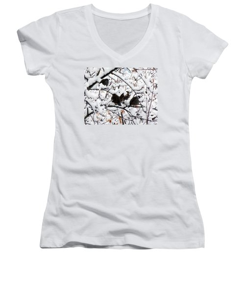 Lake Country Quail Women's V-Neck