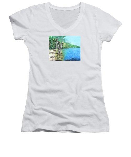 Lakeland 2 Women's V-Neck T-Shirt (Junior Cut) by Jeanne Fischer