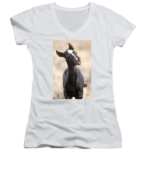 Lansa - A Wild Mustang Colt Women's V-Neck (Athletic Fit)