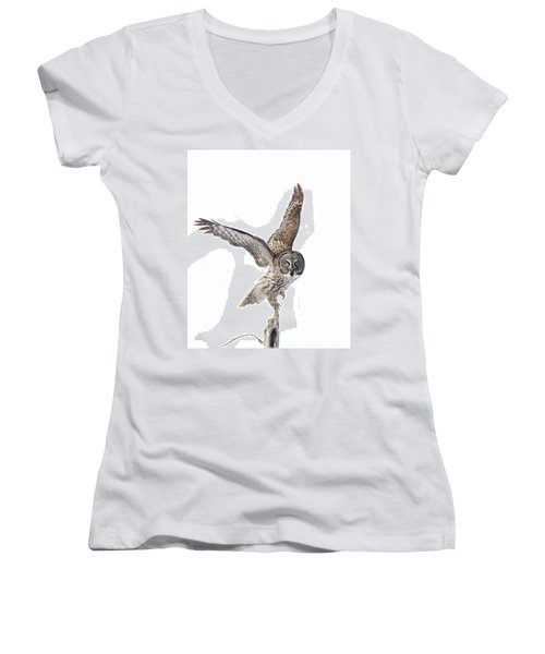 Lapland Owl On White Women's V-Neck T-Shirt (Junior Cut) by Mircea Costina Photography