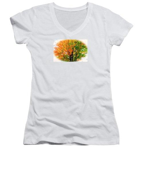 Leaves Changing Colors Women's V-Neck T-Shirt (Junior Cut) by Cynthia Guinn