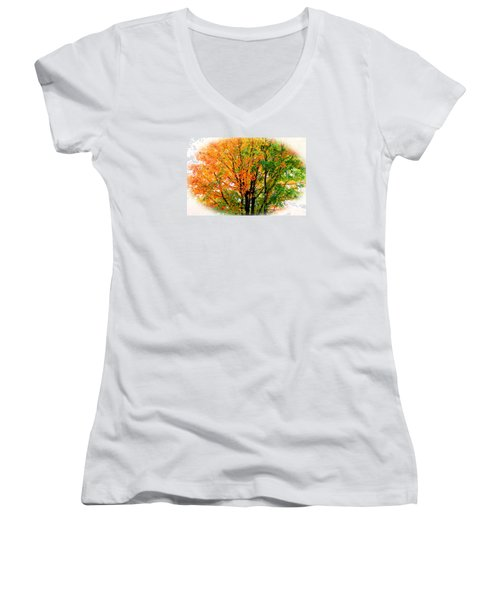Leaves Changing Colors Women's V-Neck
