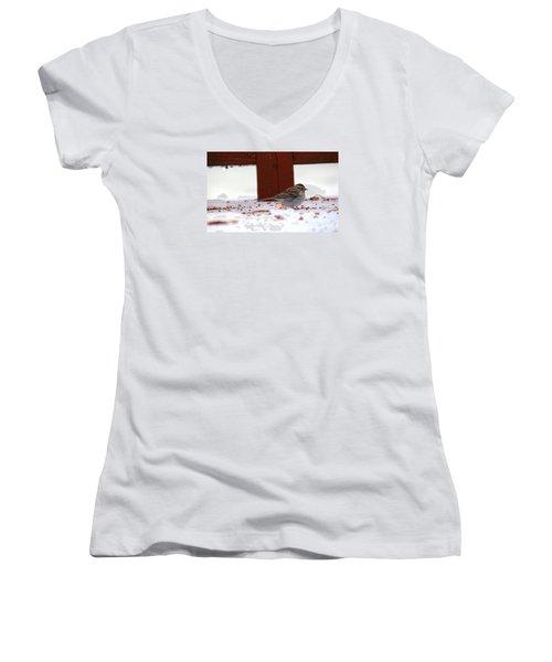 Women's V-Neck T-Shirt (Junior Cut) featuring the photograph Little Bird by Rebecca Davis