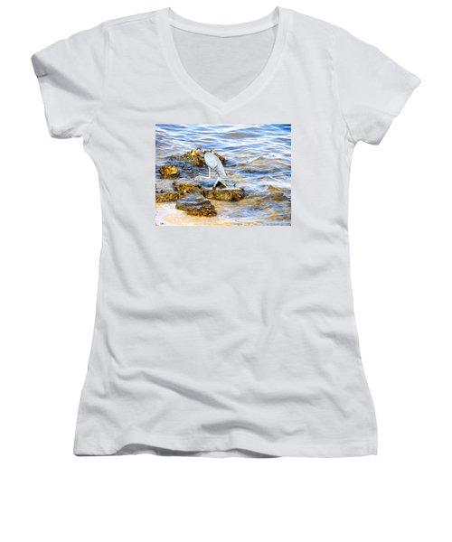 Little Blue Heron Women's V-Neck T-Shirt