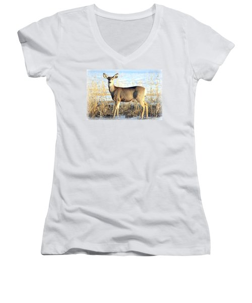 Women's V-Neck T-Shirt (Junior Cut) featuring the photograph Lonesome Doe Sunset by Barbara Chichester