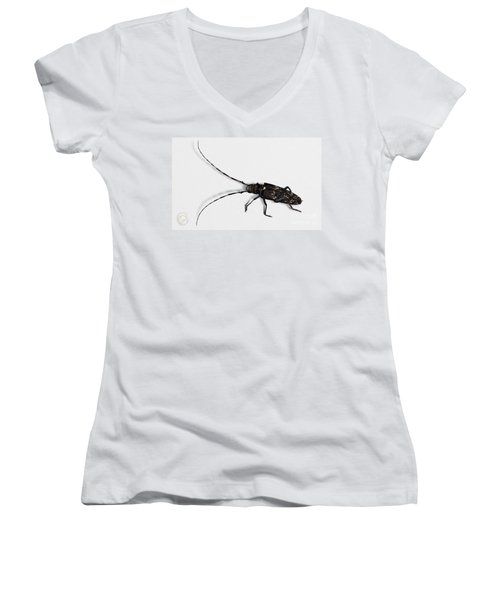 Long-hornded Wood Boring Beetle Monochamus Sartor - Coleoptere Monochame Tailleur - Women's V-Neck (Athletic Fit)