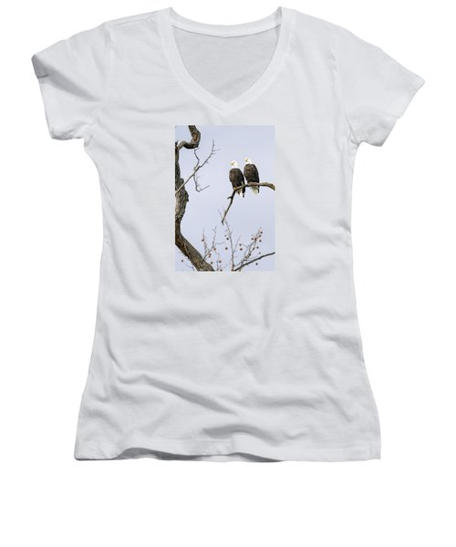 Majestic Beauty 1 Women's V-Neck T-Shirt (Junior Cut) by David Lester