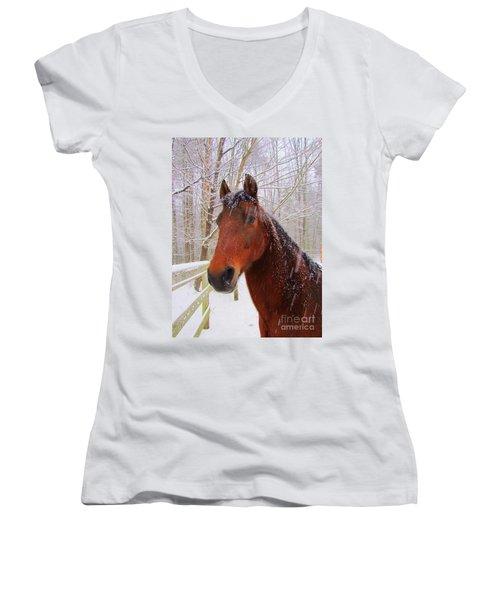 Majestic Morgan Horse Women's V-Neck (Athletic Fit)