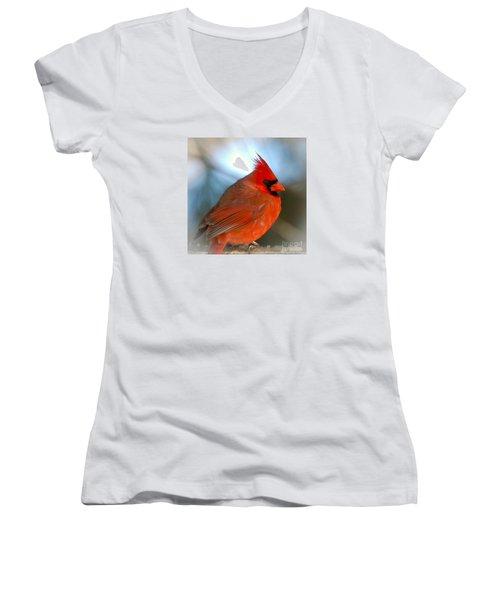 Male Cardinal  Women's V-Neck T-Shirt (Junior Cut) by Kerri Farley