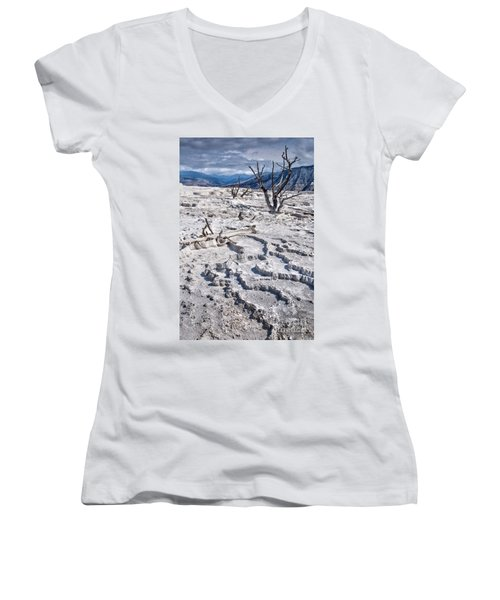 Mammoth Terraces Vertical Women's V-Neck (Athletic Fit)