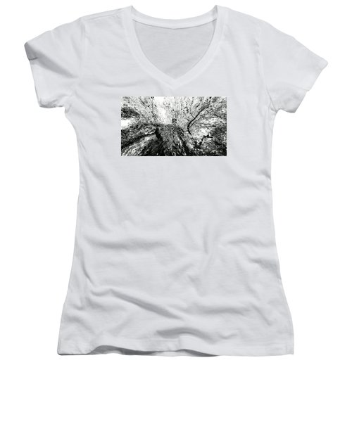 Women's V-Neck T-Shirt (Junior Cut) featuring the photograph Maple Tree Inkblot by CML Brown