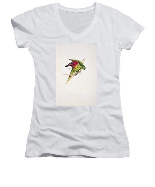Matons Parakeet Women's V-Neck T-Shirt (Junior Cut) by Edward Lear