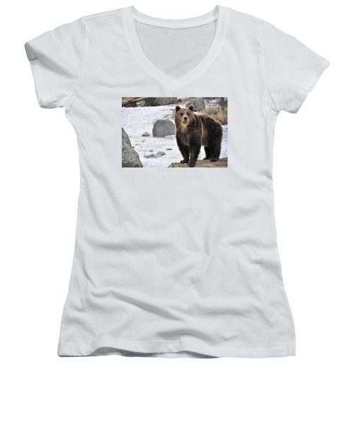 Montana Grizzly  Women's V-Neck T-Shirt (Junior Cut) by Fran Riley