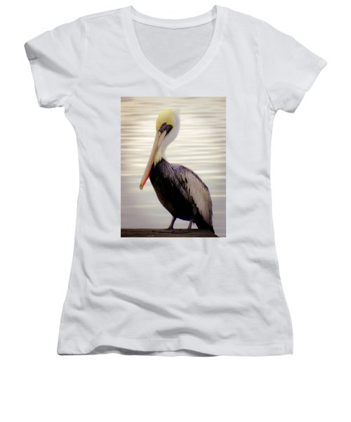 My Visitor Women's V-Neck T-Shirt