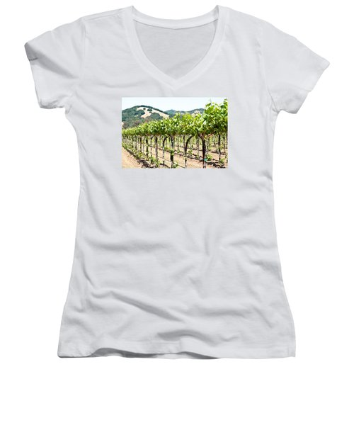 Napa Vineyard Grapes Women's V-Neck
