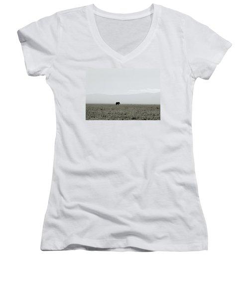 Ngorongoro Crater Women's V-Neck T-Shirt (Junior Cut) by Shaun Higson