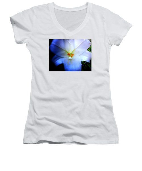 Night And Day Lilly  Women's V-Neck T-Shirt