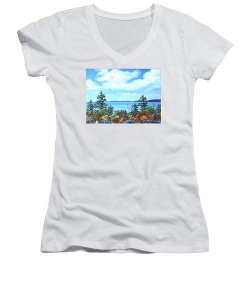 North Sky Sketch Women's V-Neck T-Shirt