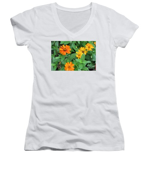 Nothing's Perfect Women's V-Neck