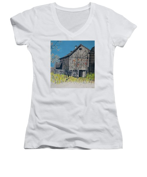Old Barn Women's V-Neck T-Shirt
