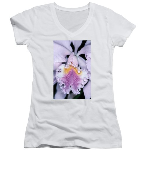 Orchid 2 Women's V-Neck T-Shirt (Junior Cut) by Andy Shomock