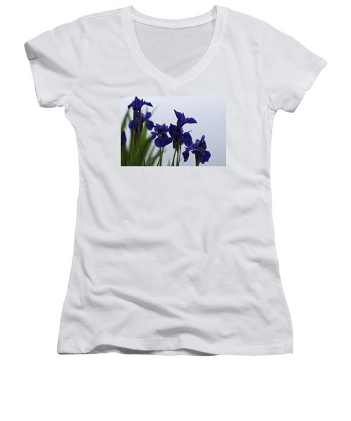 Women's V-Neck T-Shirt (Junior Cut) featuring the photograph Osaka Garden by Miguel Winterpacht