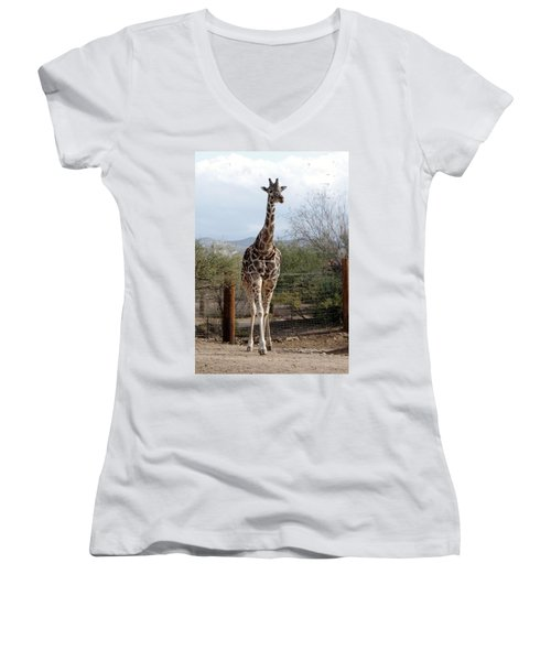 Out Of Africa  Giraffe 1 Women's V-Neck