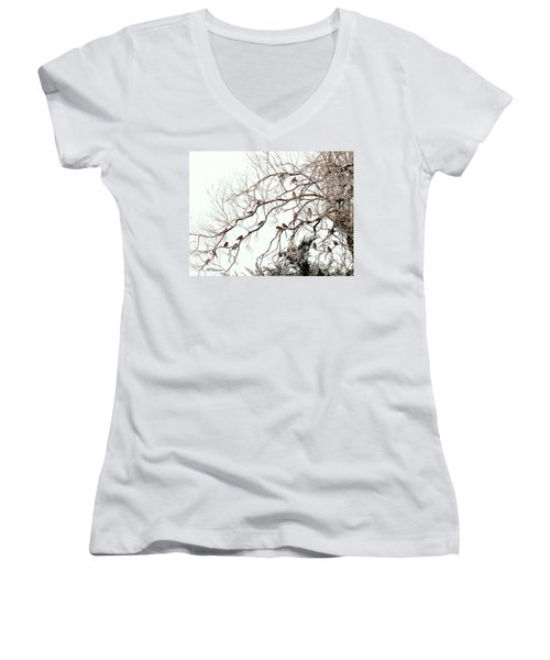 Women's V-Neck T-Shirt (Junior Cut) featuring the photograph Out On A Limb First Snow by Barbara Chichester