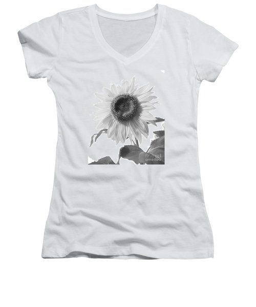 Women's V-Neck T-Shirt (Junior Cut) featuring the photograph Over Looking The Garden by Alana Ranney