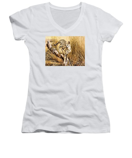 Painted Cheetah Women's V-Neck T-Shirt (Junior Cut) by Kristin Elmquist