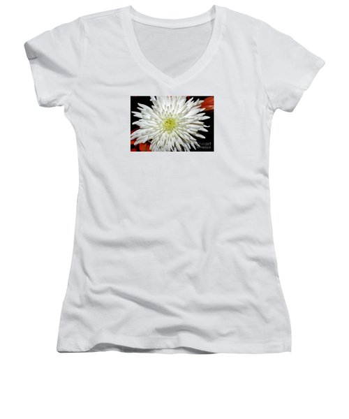 Painted Lady Women's V-Neck T-Shirt