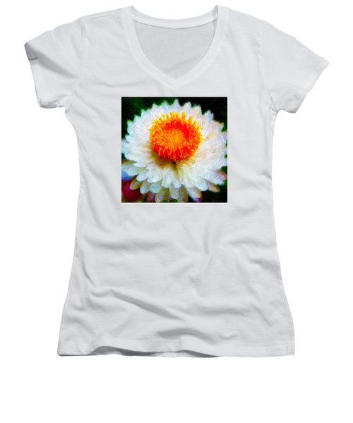 Paper Daisy Women's V-Neck (Athletic Fit)