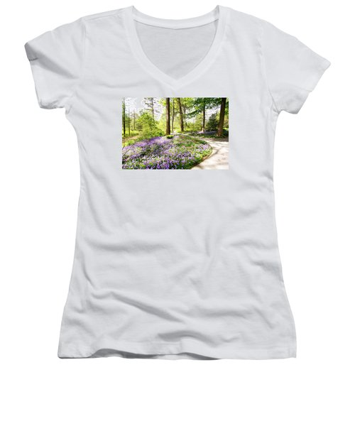 Path Of Serenity Women's V-Neck (Athletic Fit)