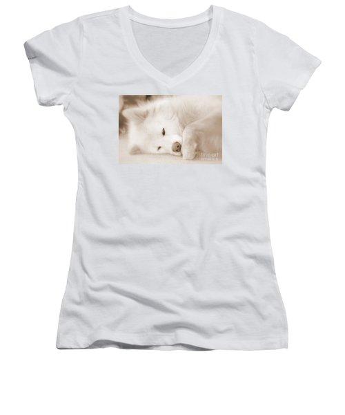 Pawsome Women's V-Neck T-Shirt