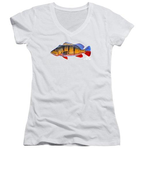 Peacock Bass Women's V-Neck T-Shirt (Junior Cut) by Carey Chen