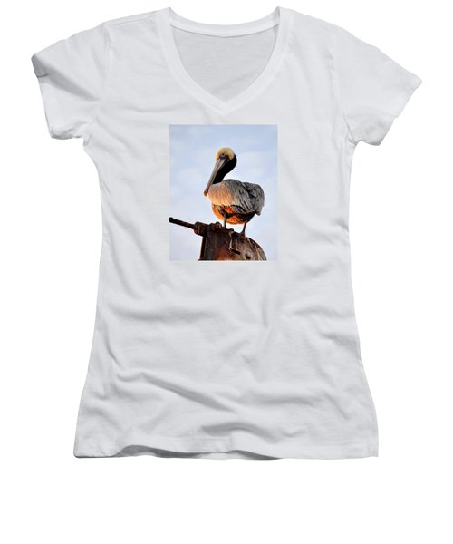 Women's V-Neck T-Shirt (Junior Cut) featuring the photograph Pelican Looking Back by AJ  Schibig