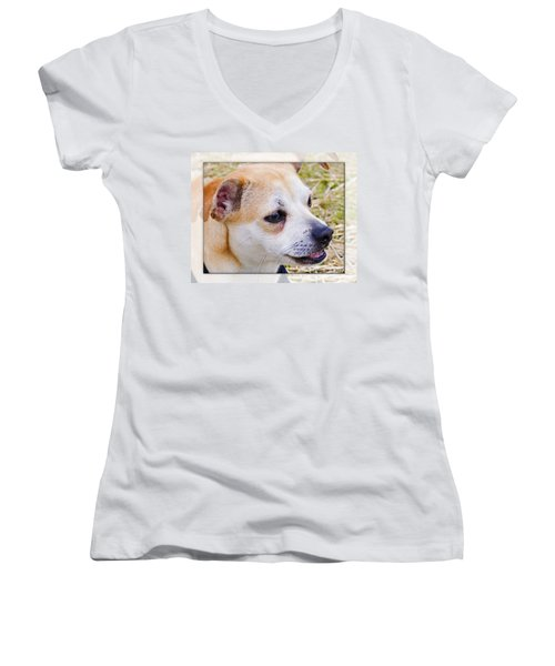 Pets Women's V-Neck T-Shirt